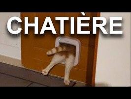 LA CHATIÈRE - PAROLE DE CHAT